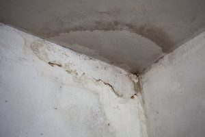 Penetrating Damp Treatment